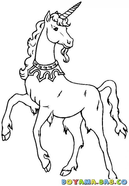 At boyama resimleri