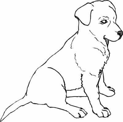 Köpek boyama resimleri