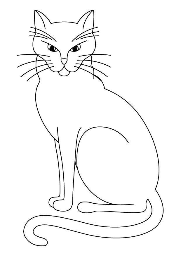 Kedi Boyama Resimleri 6 Jpg Hayvanlar