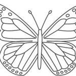 Mavi Lycaenidae
