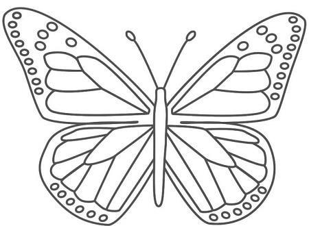 Kelebek Boyama Resimleri1thumbjpg Hayvanlar