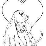 Çok güzel Airedale köpek resimleri
