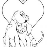 Airedale köpek cinsi