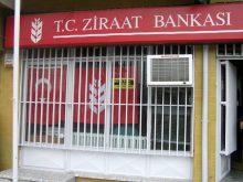 2011 Hayvancılık Kredisi Ziraat Bankası 0 Faizli
